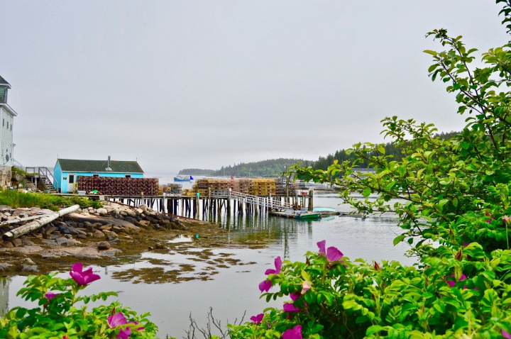 Coastal Maine Vacation